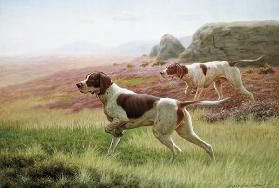 Pointers in a Landscape