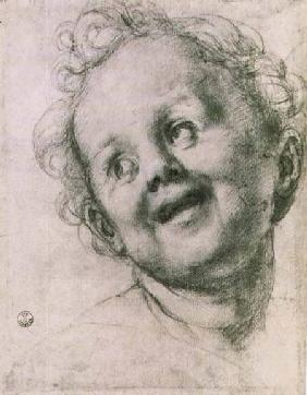 Study of a putto for the 'Holy Family with Saints' (Pucci altarpiece) in the Church of San Michele V